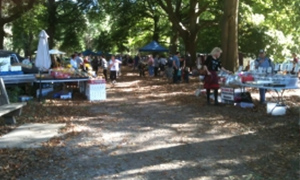 Healesville Coronation Park Market