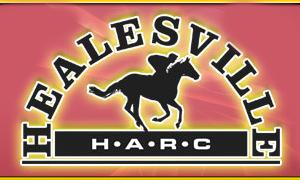 Healesville Races