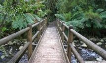 Badger Weir Picnic Area